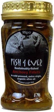 Anchois filety ze zrównoważonych połowów w ekologi